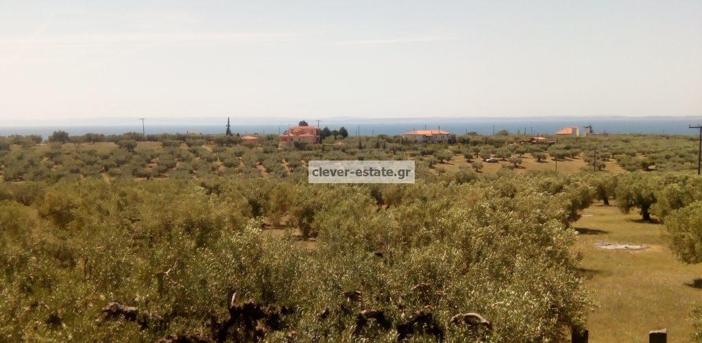 clever-estate.gr_1331_22